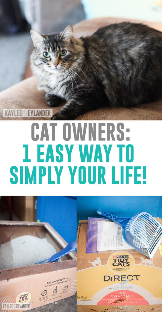 best kitty litter ever