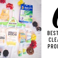 6 Time & Money Saving Fall Cleaning Products & GIVEAWAY!!!