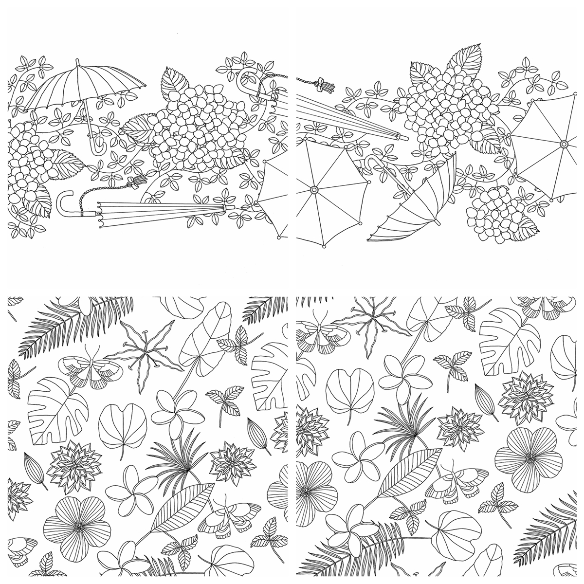 Four Seasons Coloring Book Kayliebooks