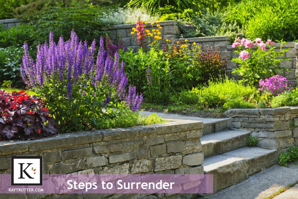 Steps-to-surrender