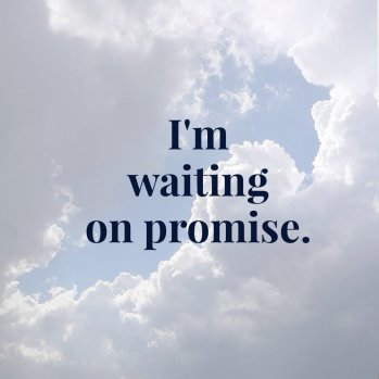 Promise (2)