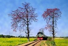 Photo of Bangladeš namjerava 100.000 arakanskih muslimana premjestiti na otok