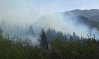 Photo of Husović: Ljudski faktor odgovoran za požar
