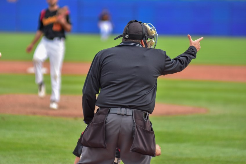 Sign up now for Federal Umpire and Scorer Clinics 2019