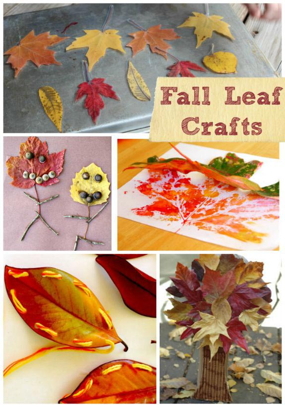 Fall Leaves Draw Easy