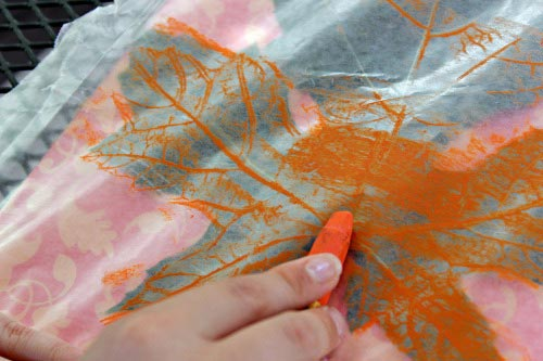 How To Make Leaf Rubbings Edventures With Kids