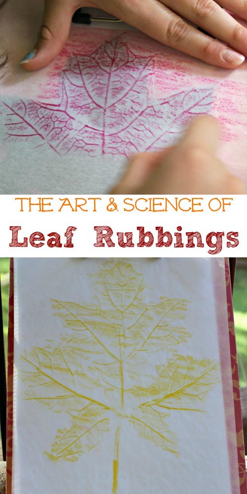 Learning Art & Science with Leaf Prints |Edventures with Kids