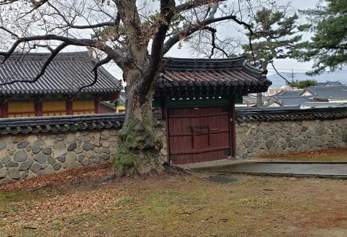Busan day 4 - Daereungwon Tumuli Park 6