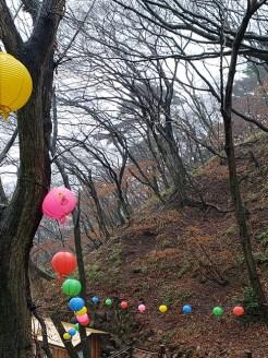 Busan day 4 - Seokguram Grotto 7