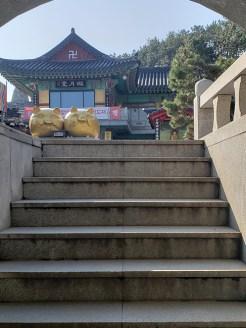 Day 6 - Haedong Yonggungsa 31