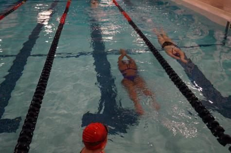 Girls' swim competes at Lansing