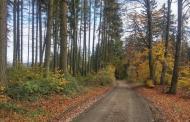 Šternberský vandr 2017 na konci října ukázal 70 turistům nádhernou podzimní přírodu.