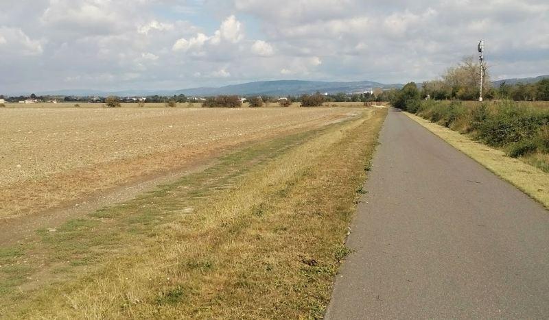 Rozhledna na Vysoké Roudné nad Šternberkem