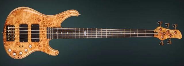 N. Tzvetkov signature bass guitar