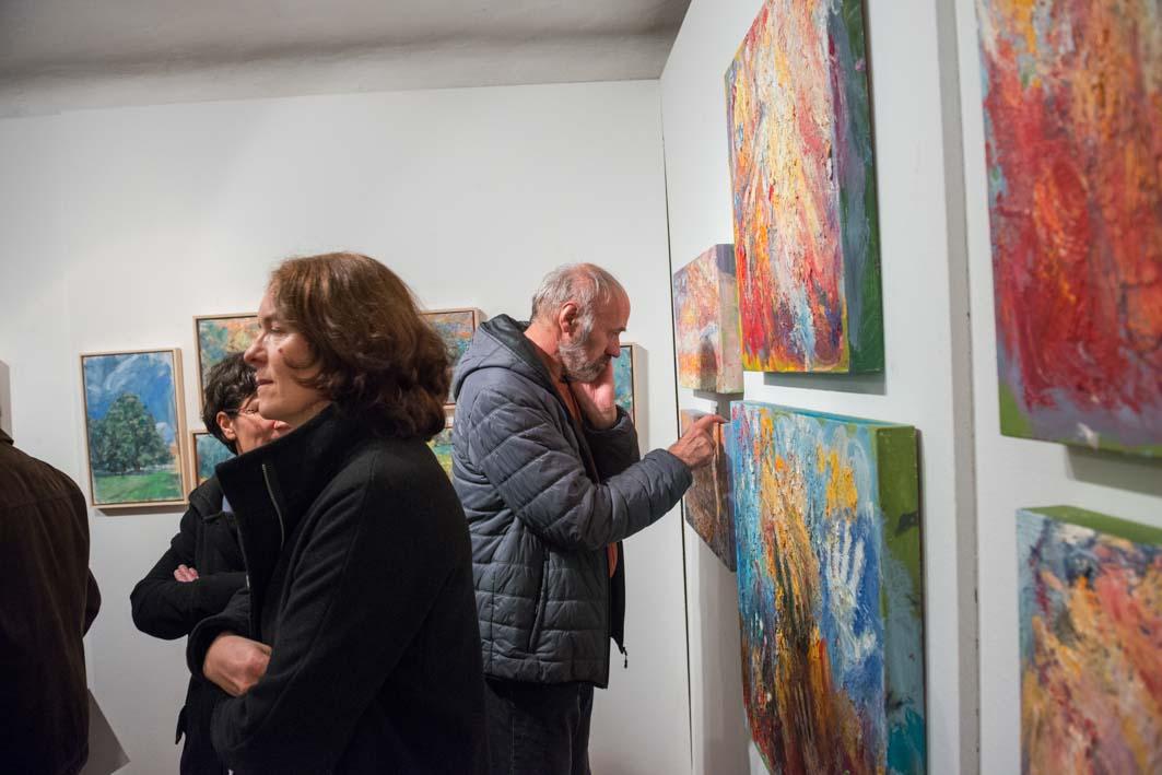 jost_snoj_galerija_meznarija_menges_kdfjm_muzej_menges_male_17112017-5279