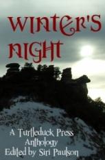 Winter's Night ebook cover