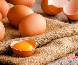 Risiko Diabetes Dapat Dikurangi Dengan Cara Pengolahan Telur Yang Benar