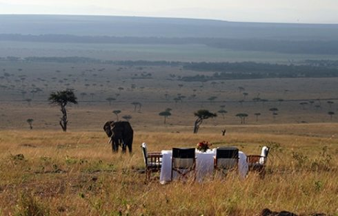 Image result for serengeti migration camp