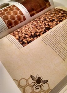 A page layout from the Backyard Beekeeper