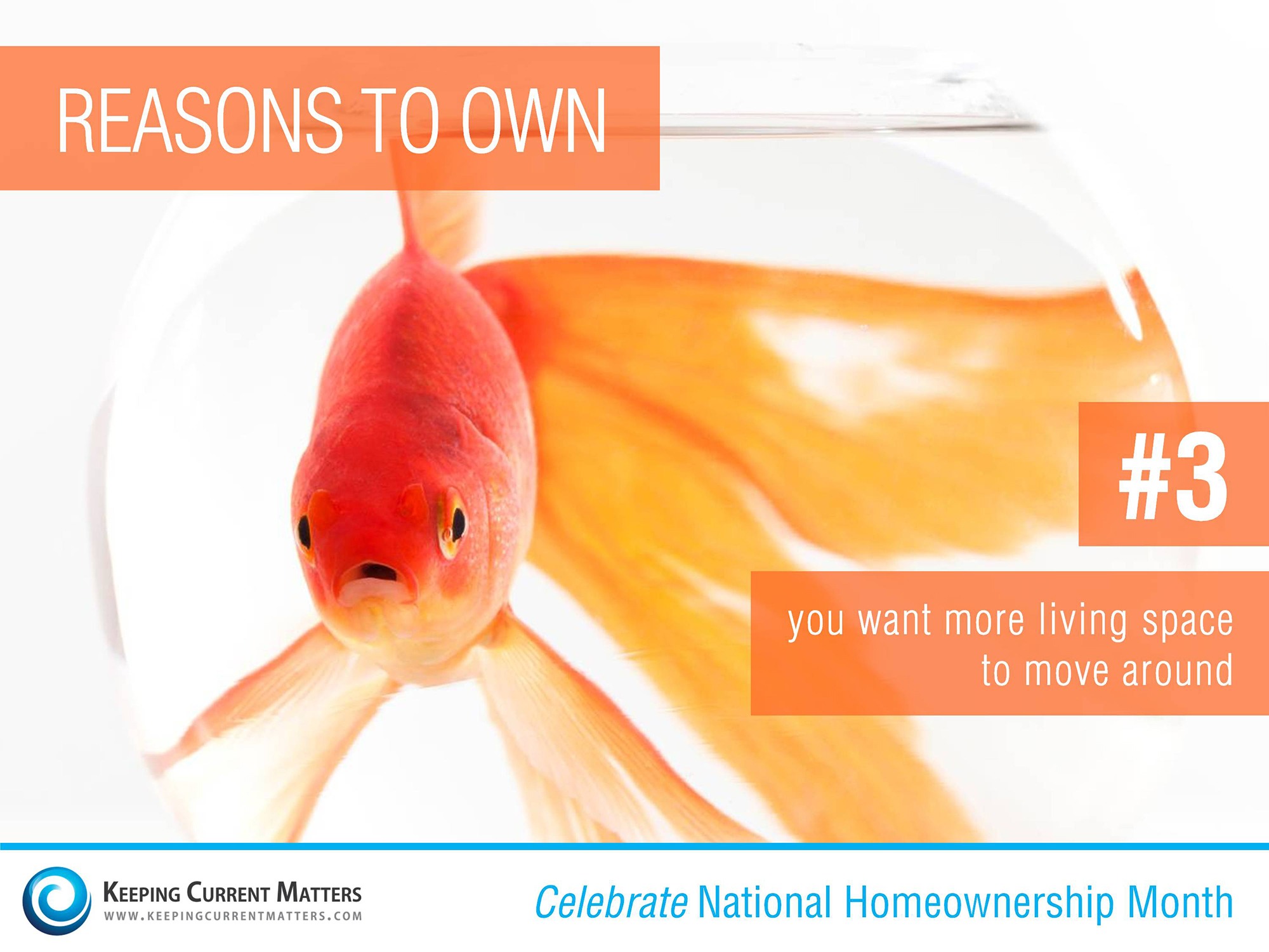 Reason #3 to Own | Keeping Current Matters