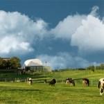 merrymead farm