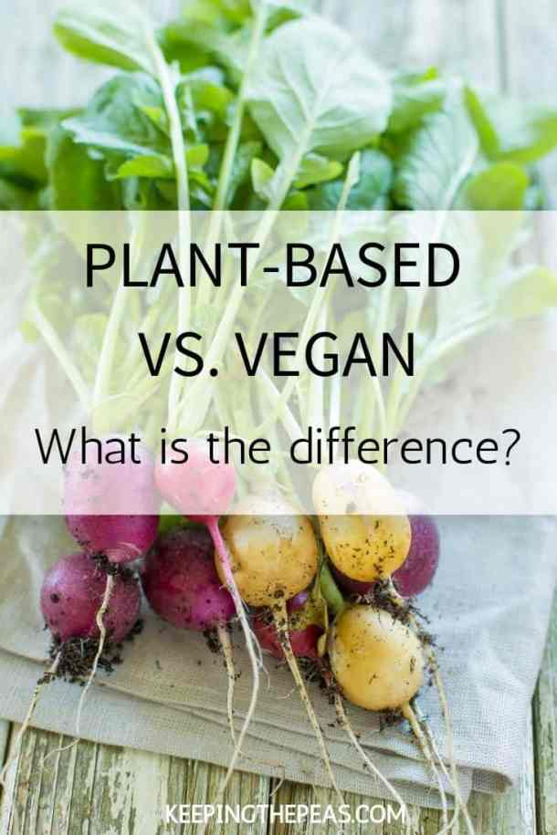 plant-based vs. vegan pin