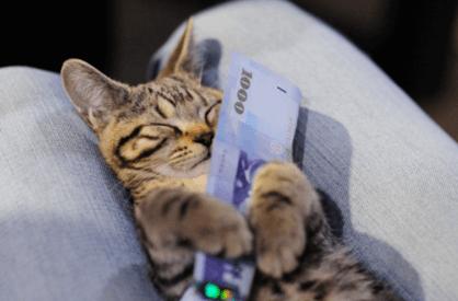 финансовый гороскоп предсказал доходный год!