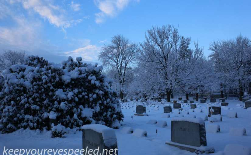 Mountain View Cemetery, A Winter Wonderland in Spring.