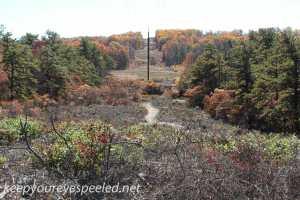 Fall hike (20 of 43)