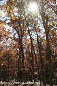 Fall hike (34 of 43)