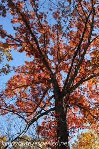 Fall hike (36 of 43)
