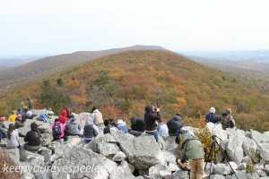 Hawk Mountain overlooks (11 of 20)