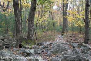 Hawk Mountain river of rocks  (17 of 50)