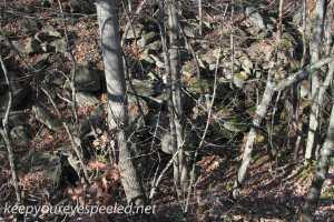 Railroad tracks hike Hazleton Heights  (28 of 47)