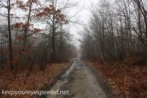 Tresckow hike  (11 of 50)