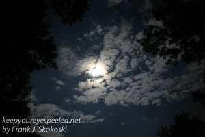 full moon -6