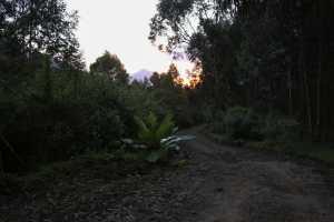 volcano-national-park-3
