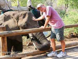 zimbabwe-elephant-ride-8