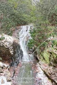 lehigh-gorge-hike-5