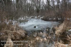 PPL Wetlands -28