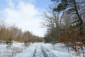 Rails to Trails -4