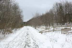 Rails to Trails -50