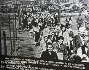 Auschwitz exhibits -15