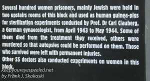 Auschwitz exhibits photos -27
