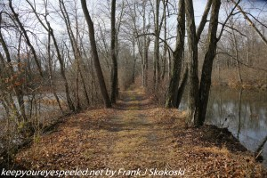 tree lined path along canal
