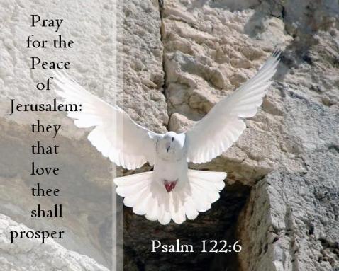 2015-10-16-13-41-12.Vrede voor Jeruzalem