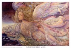 josephine-wall-natures-guardian-angel