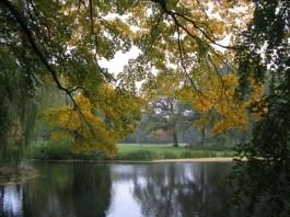 weerspiegelende herfst Marijke Abbink