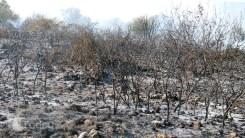 Πυρκαγιά κοντά σε σπίτια