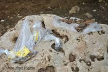 Ανασκαφές στα Τζαννάτα